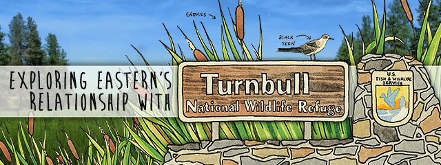Illustration of Turnbull Wildlife Refuge Sign