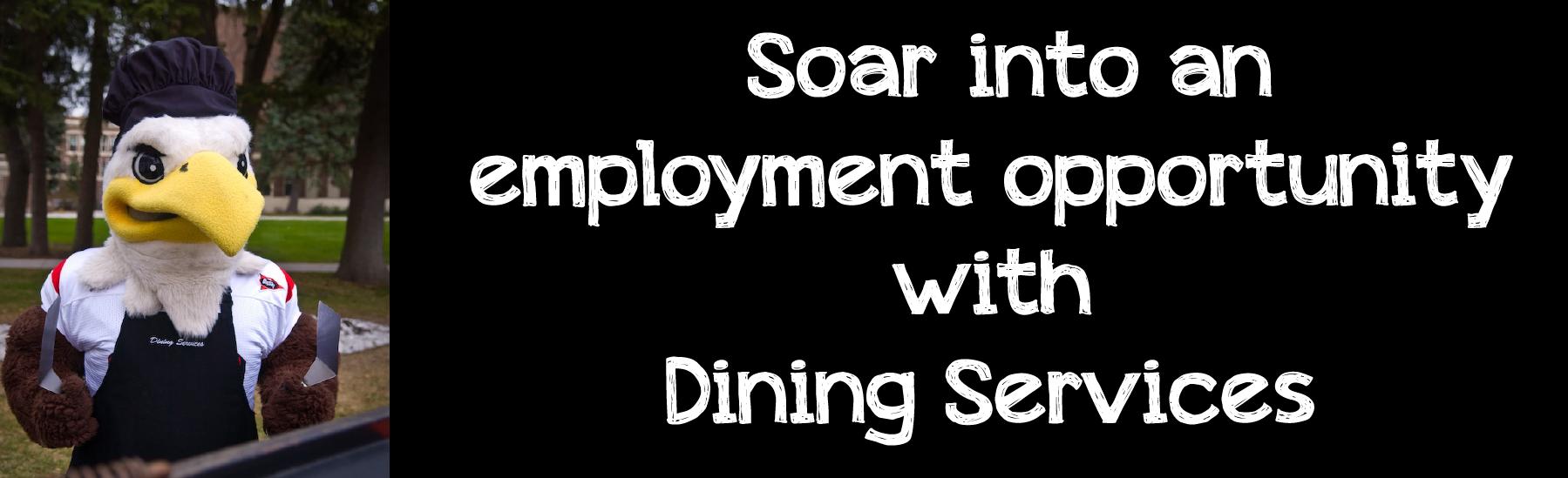 Employment-header-5-01