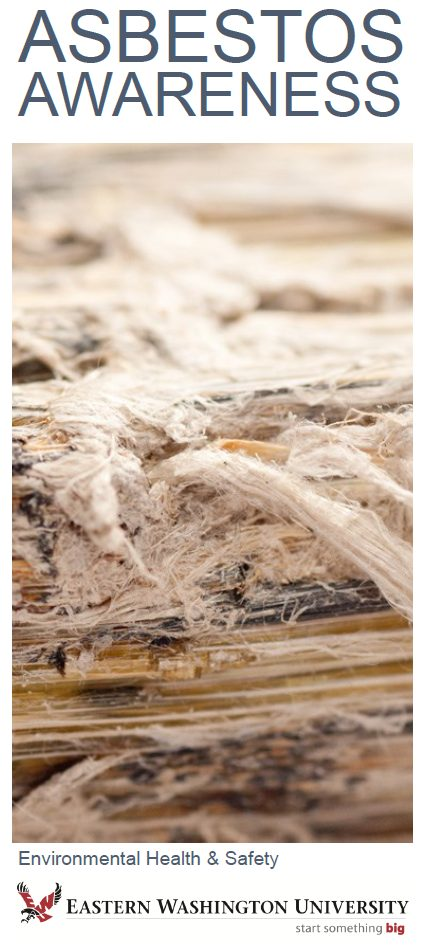Asbestos awareness brochure cover image