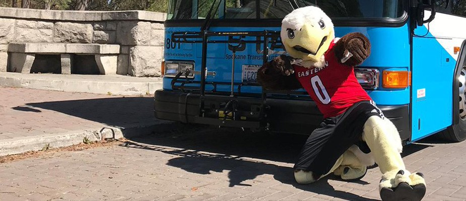 Photo: Swoop with STA Bus